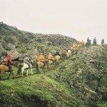 Iceland Golden Circle Trail Photo13
