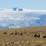 Iceland Golden Circle Trail Photo20