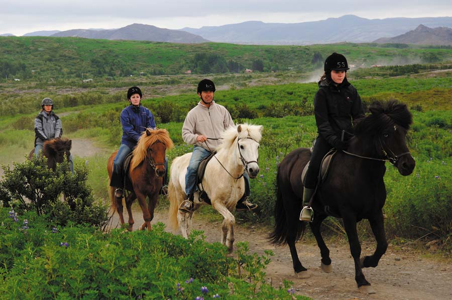 Experiencing the Best Horse-Riding Holidays in Iceland