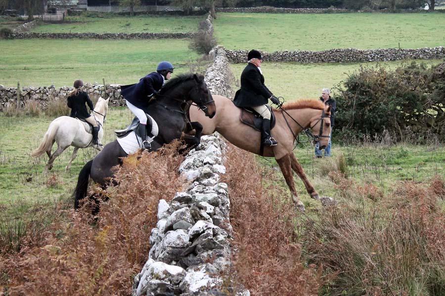 Flowerhill Cross Country Horse Riding Holidays Ireland