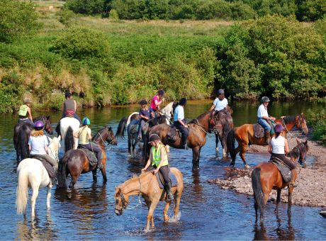 Killarney Trails | Horse Riding Holidays Ireland
