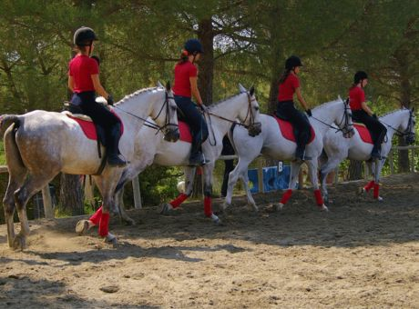 Classical Dressage Tuscany | Horse Riding Holidays Italy