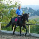 Italy Classical Dressage Tuscany Photo24