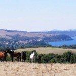 Italy I Due Laghi Riding Holiday Photo7