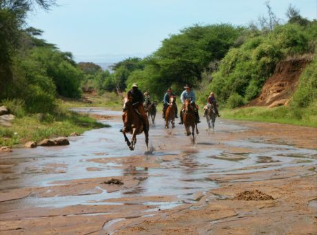Borana Safari Lodge | Horse Riding Holidays Kenya