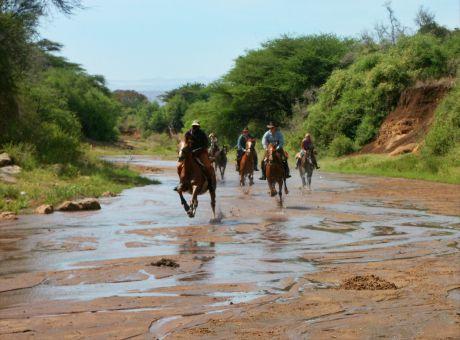 Borana Safari Lodge | Horse Riding Holidays Kenya
