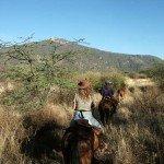 Kenya Borana Safari Lodge Photo23