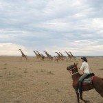 Kenya Gordies Masai Mara Photo3