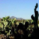 Mexico Rancho las Cascadas Photo19