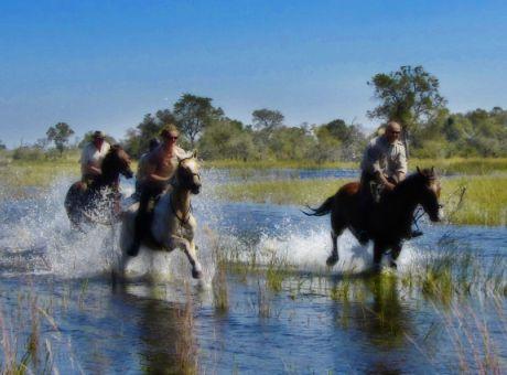 RAW Botswana