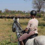 Raw Botswana Photo10