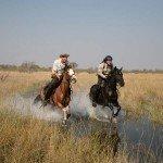Raw Botswana Photo11