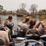 Raw Botswana Photo4