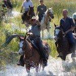 Raw Botswana Photo9