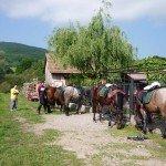 Romania Transylvania Trail Photo15
