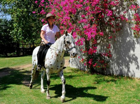 The Winelands | Horse Riding Holidays South Africa