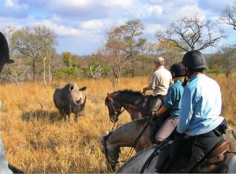 Wait a Little | Horse Riding Holidays South Africa