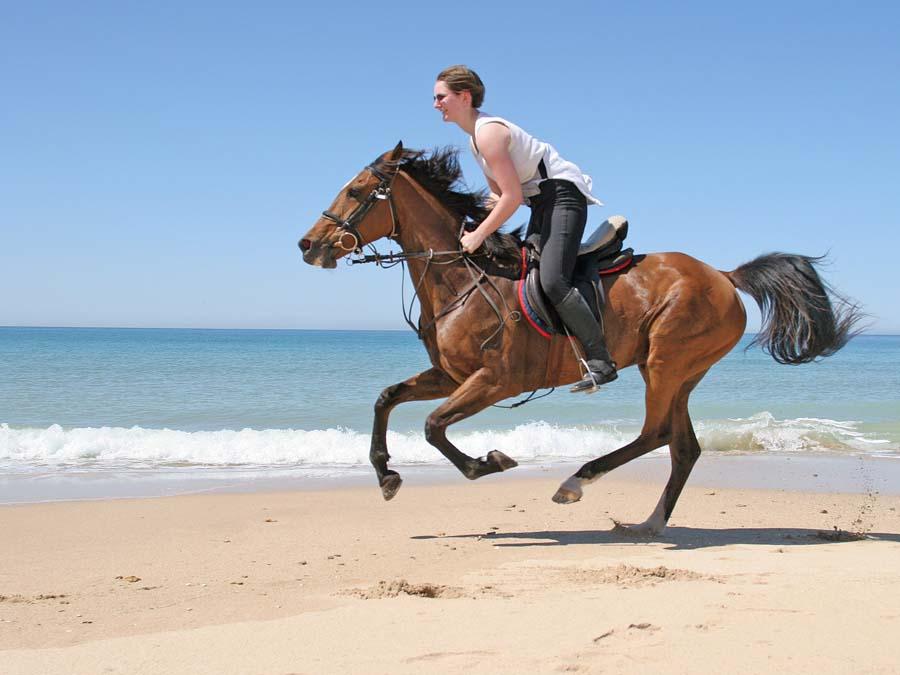 Spain Beach Ride Photo19