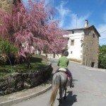 Spain Castles of Gredos Photo4