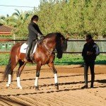 Spain Dressage High School Photo32