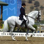 Spain Dressage Soto Clinics Photo1