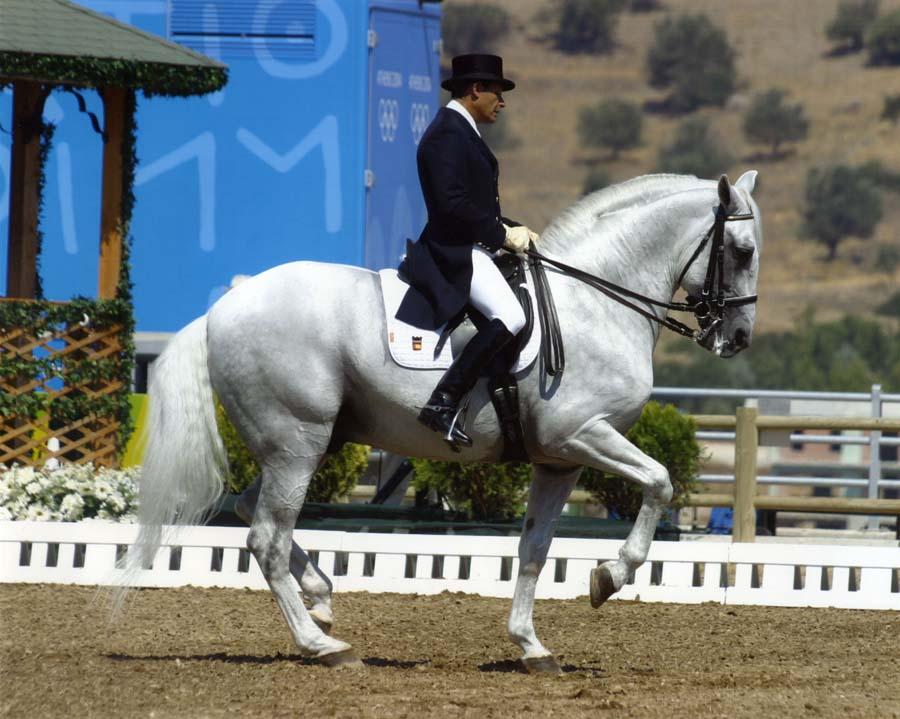 Spain Dressage Soto Clinics Photo1