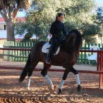 Spain Dressage Soto Clinics Photo23