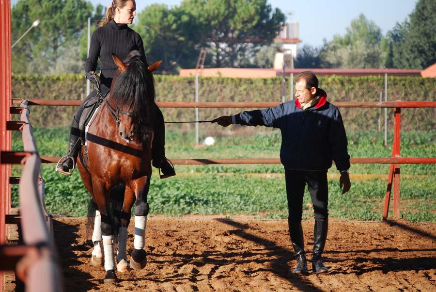 Spain Dressage Soto Clinics Photo4