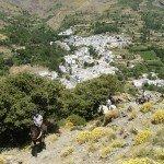 Spain Sierra Nevada Trail Rides Photo10