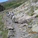 Spain Sierra Nevada Trail Rides Photo11