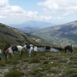 Spain Sierra Nevada Trail Rides Photo3