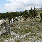 Spain Sierra Nevada Trail Rides Photo7