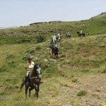 Spain Sierra Nevada Trail Rides Photo9