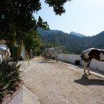 Spain Sierra Tejeda Photo3