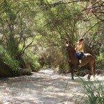 Spain Sierra Tejeda Photo5