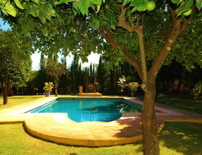 Spain Sotogrande Polo Photo11