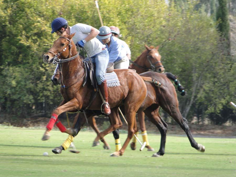 Spain Sotogrande Polo Photo5