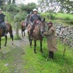 UK Cattle Herding Farm Dartmoor Photo8