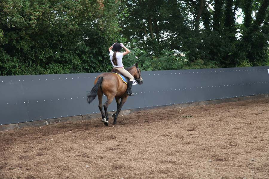 Wellow Farm Horse Riding Holidays Uk Zaras Planet