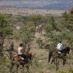 Kenya Riding Safari Blog Image3