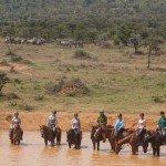 Kenya Riding Safari Blog Image7