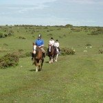 Riding Holiday UK Cornwall1