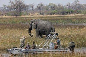 Michael and Louise on RAW Botswana Safari1