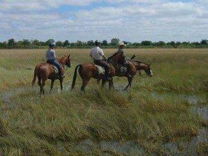 Michael and Louise on RAW Botswana Safari3