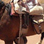 Atacama Desert Chile Adventure Ride - Nov 2015 Img05