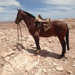 Atacama Desert Chile Adventure Ride - Nov 2015 Img06
