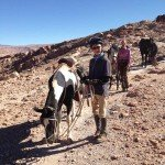 Atacama Desert Chile Adventure Ride - Nov 2015 Img20