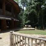 Rainforest lodge 2 - Nile Horseback Safaris Uganda