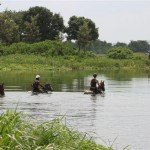 Swimming 2 - Nile Horseback Safaris Uganda