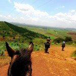 View - Nile Horseback Safaris Uganda